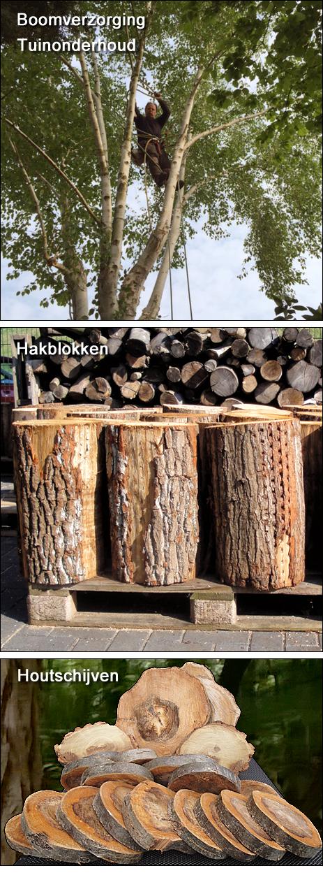 Groenbedrijf verhoeve moordrecht voor al uw tuinwerkzaamheden boomverzorging toppen van - Thuis container verkoop ...